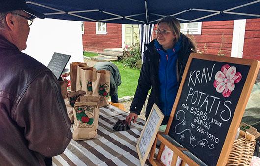 Anna Björs säljer KRAVmärkt potatis. Foto: Pelle Nyberg